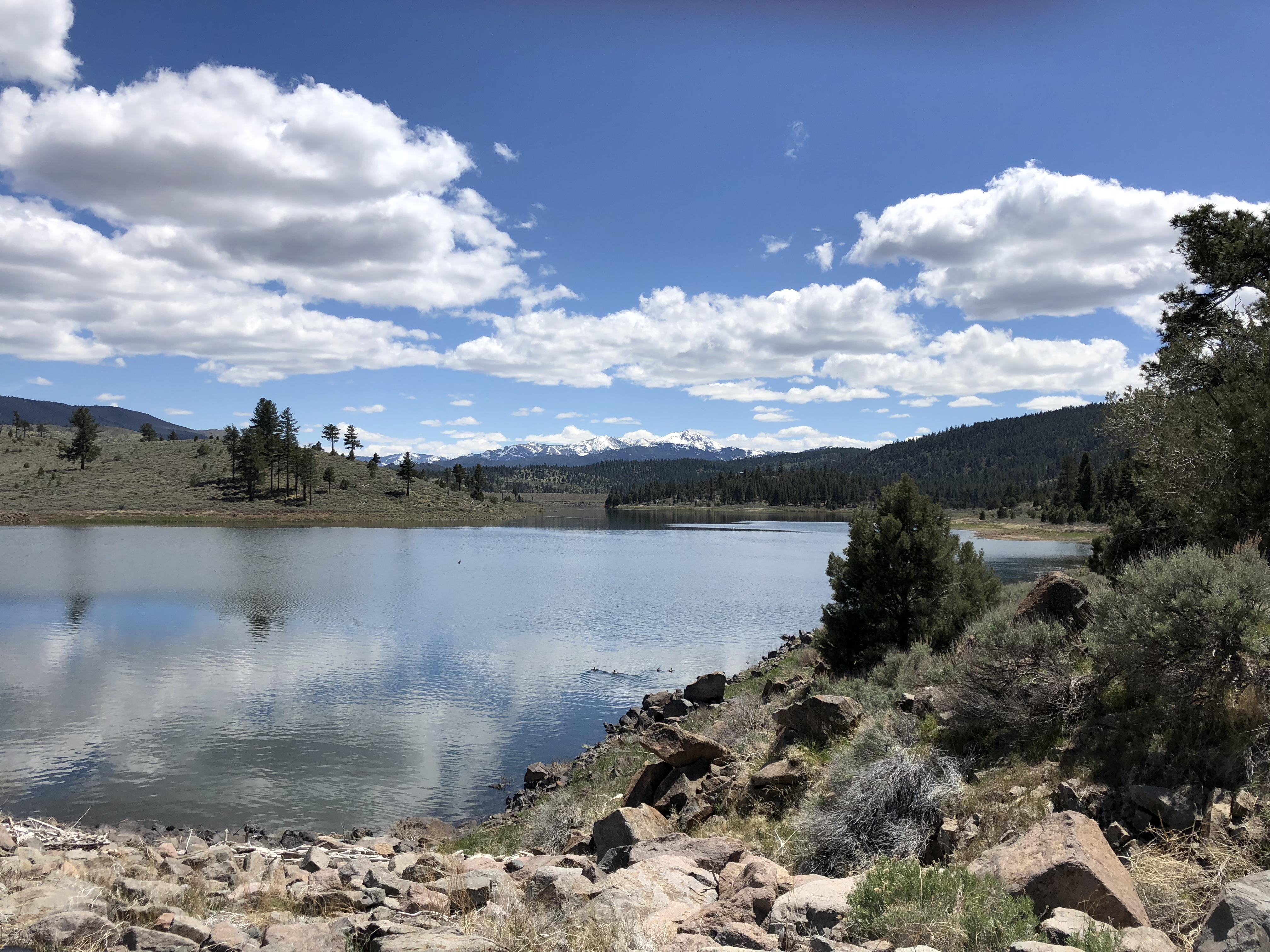 Harvey Place Reservoir